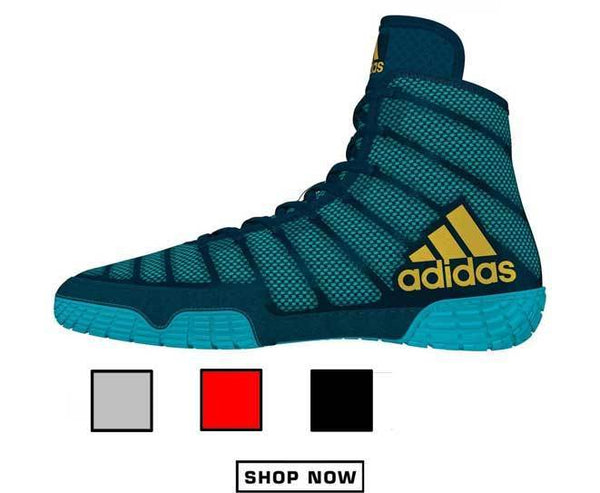 Good Cheap Wrestling Shoes