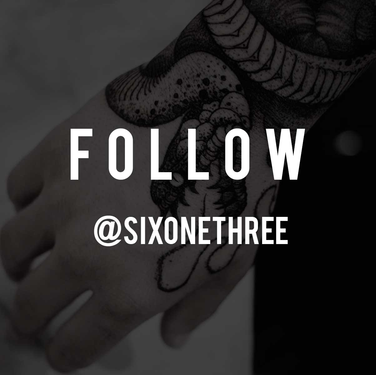 Follow - @sixonethree