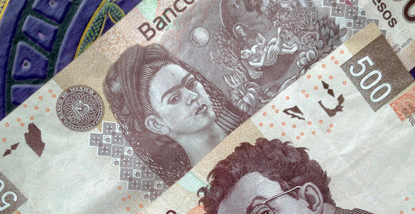 4 Latin American Countries With Women On Their Money