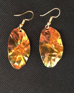 Oval Beauty Earrings