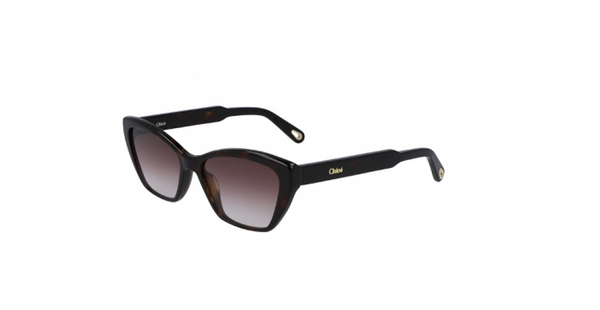 CHLOÉ Cat Eye Sunglass Tort
