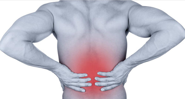New Back Pain Study May Shock You...