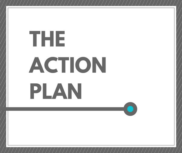 The Action Plan: 90 Minute Goal Planning Guidance, Resources, and Strategy Session™