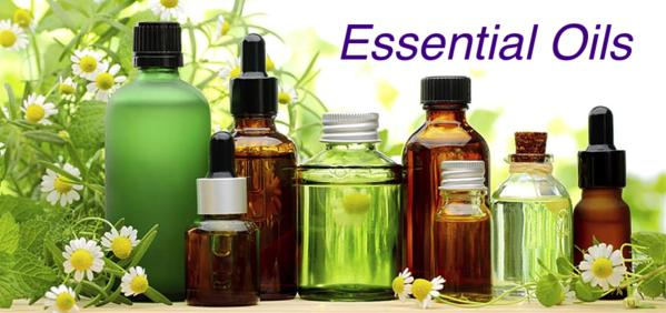 Top 5 Essential Oils That Are Important For Your Skincare and How to Use Them