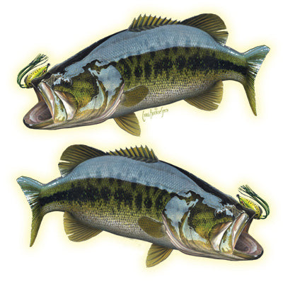 bass sticker or decal