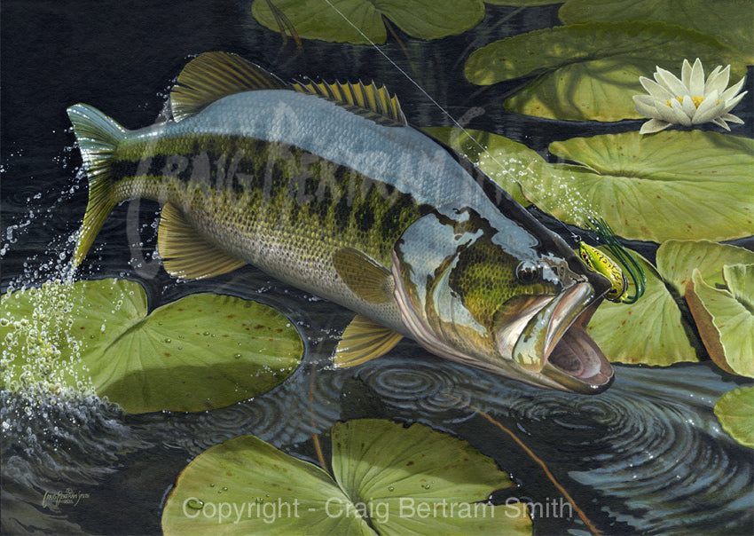 a painting of a large mouth bass jumping