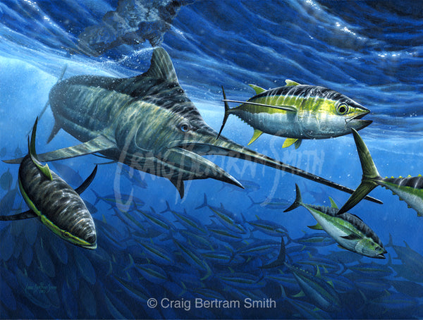 a painting of a black marlin chasing a yellowfin tuna