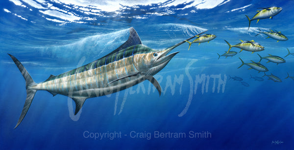 A painting showing a blue marlin chasing yellowfin tuna near the water's surface