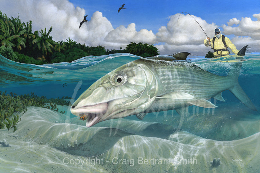 a painting of a tailing bone fish on the flats with a fisherman in the background