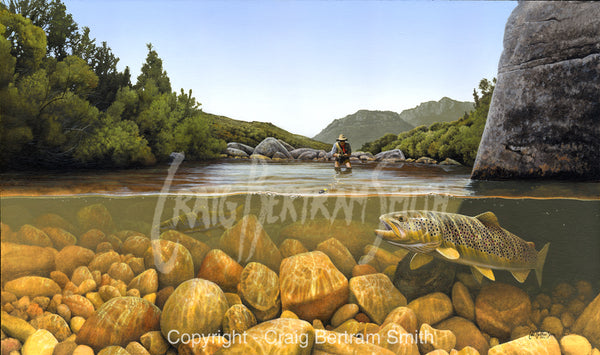 a painting of a brown trout about to take a fly with a fly fisherman in the background