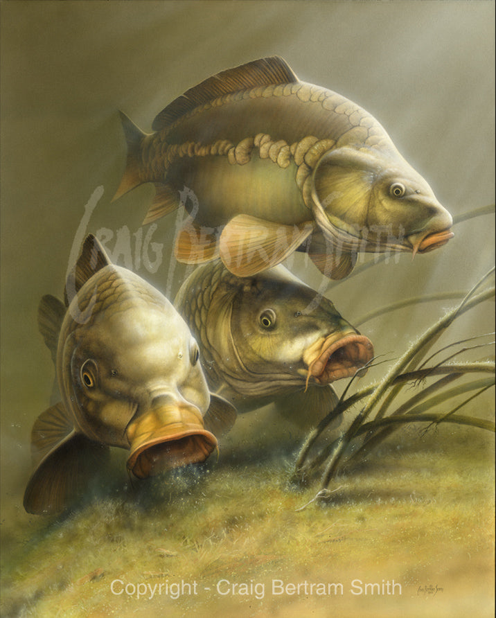 a painting of carp swimming and feeding together