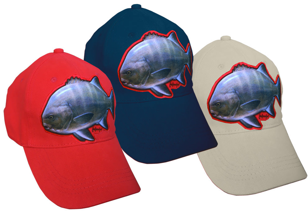 navy, red and grey caps with galjoen artwork