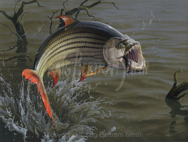 a painting of a tigerfish jumping with its mouth open baring its teeth