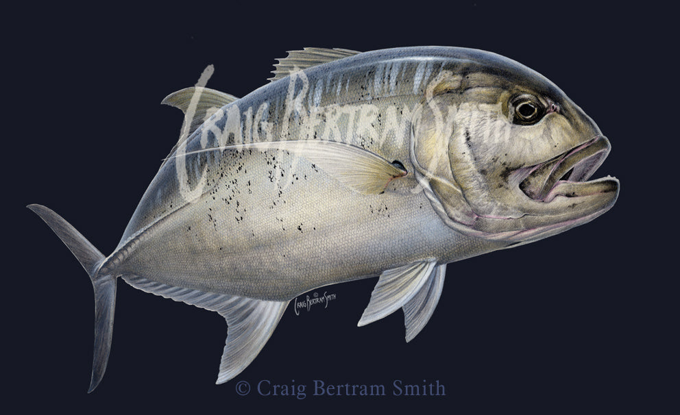 a painting of giant trevally GT