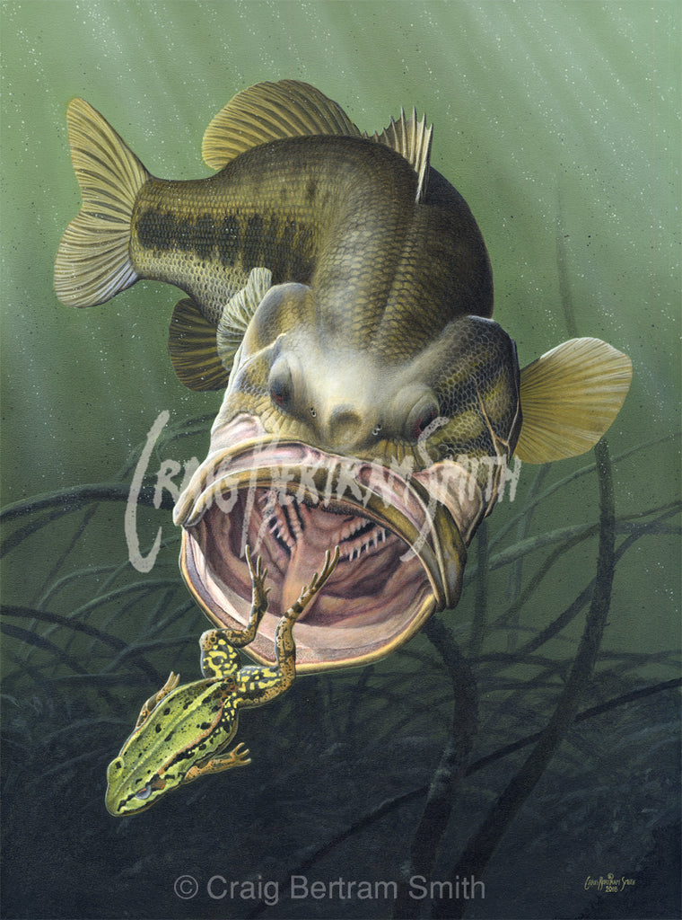 a painting of a large mouth bass chasing a frog