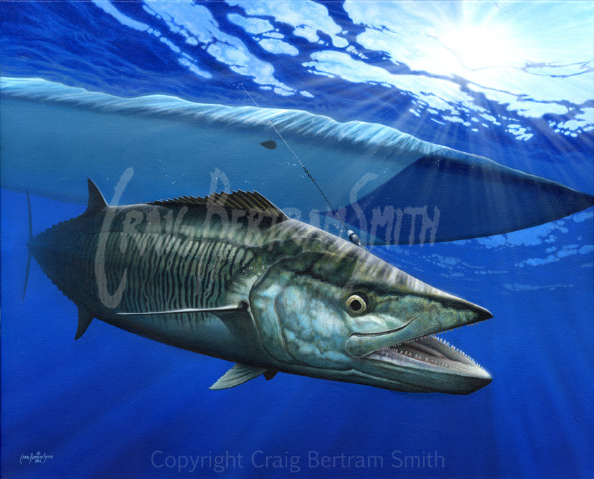 a painting of a king mackerel just below a kayak