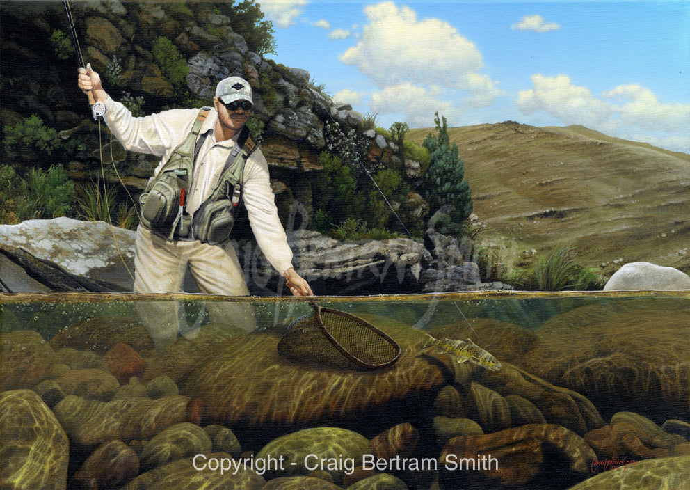 a painting of a fly fisherman catching a brown trout