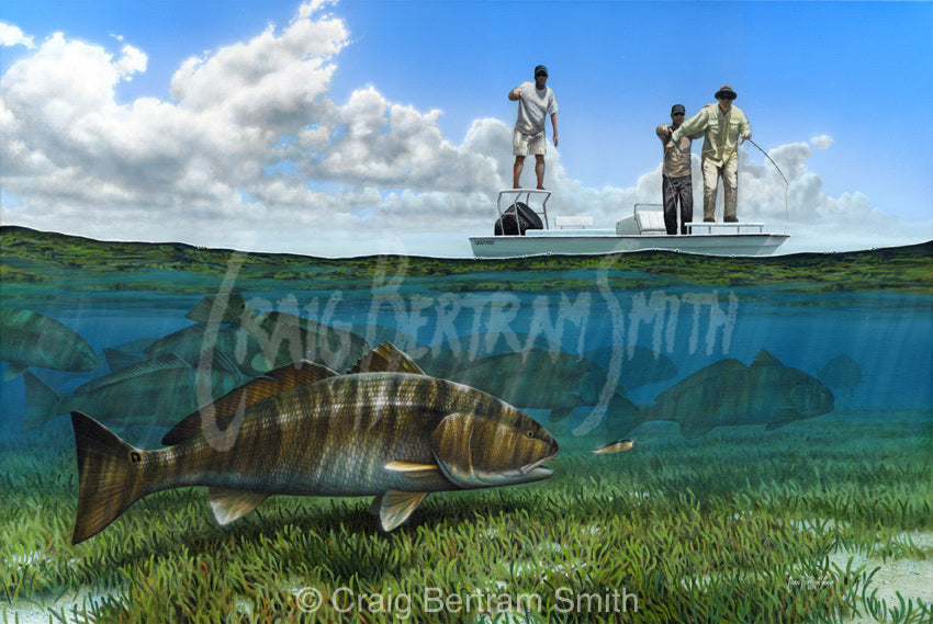 a painting of a fly fisherman stripping a fly to a redfish in florida