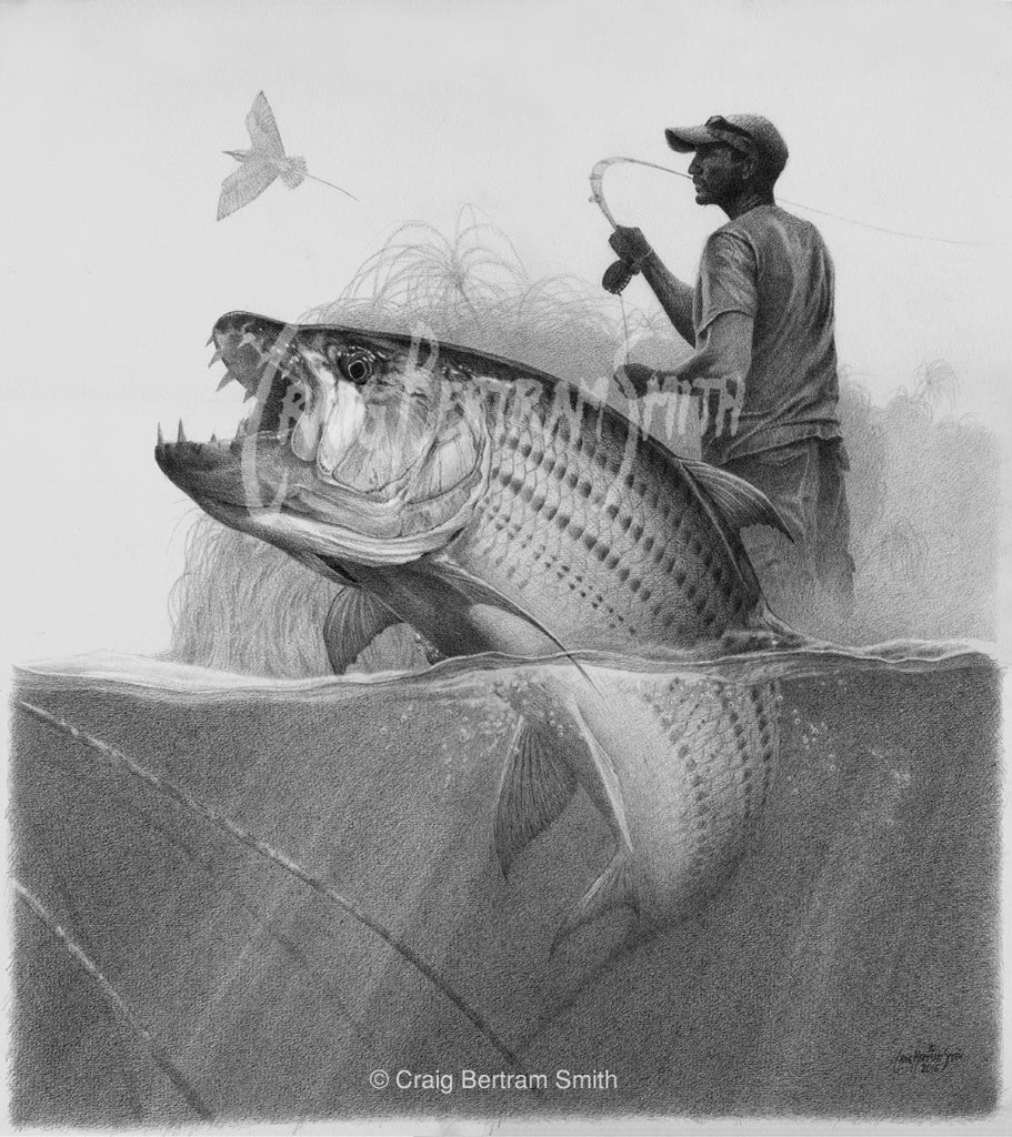 a pencil drawing of a tigerfish jumping with s fly fisherman in the background
