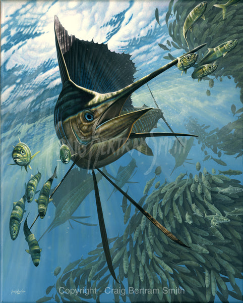 a painting of a sailfish chasing bait fish round a bait ball