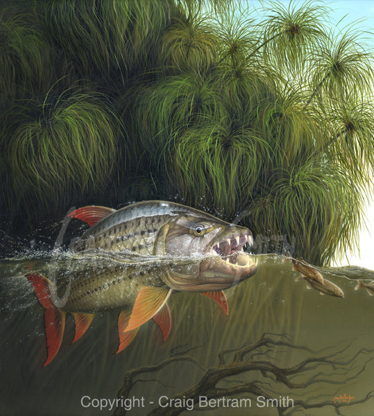 a painting of a tigerfish underwater chasing bulldog fish with reeds in the background