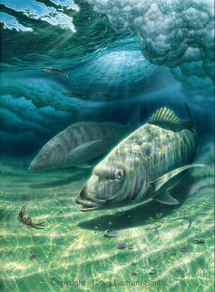 a painting of white steenbras fish hunting under water in the surf