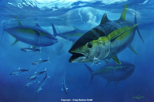 a painting of a yellowfin tuna hunting underwater