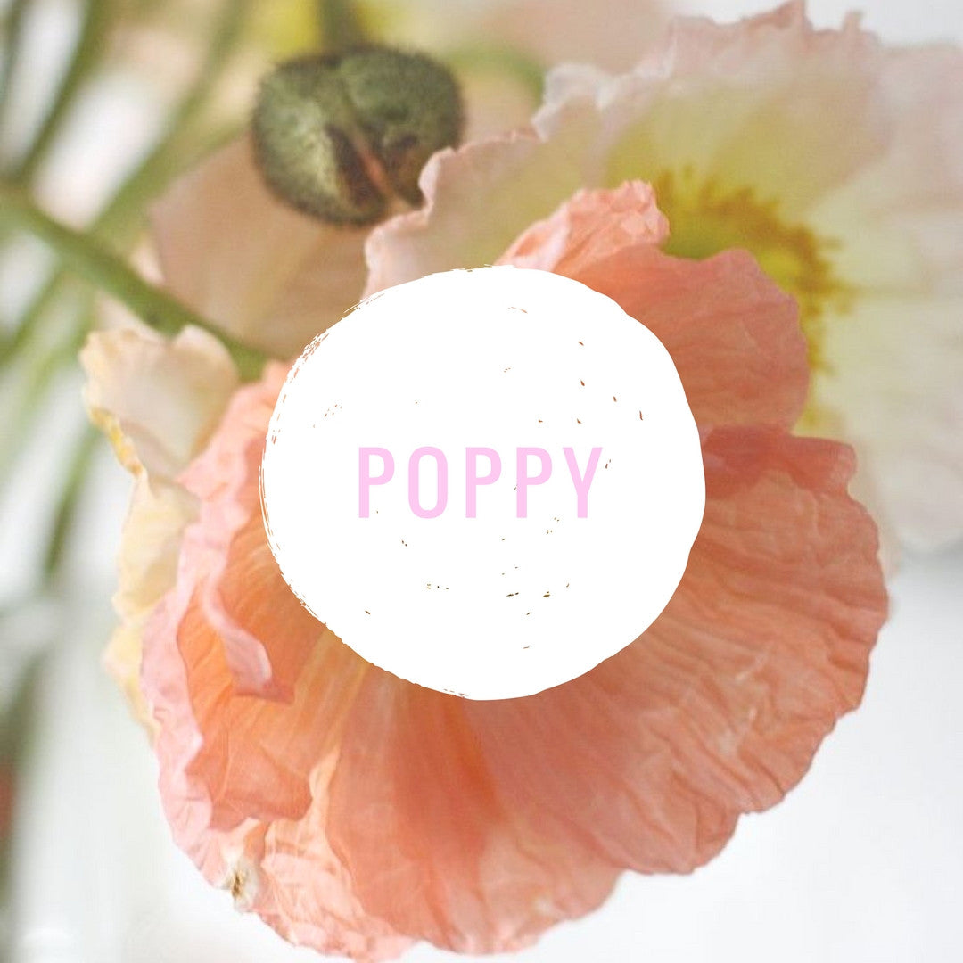 Sweetest Baby Girl Names Inspired By Flowers Viva The Flower Store