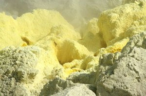 elemental-sulfur-on-vegetable-garden