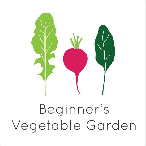 Beginner's Vegetable Garden Seed Bundle - Small