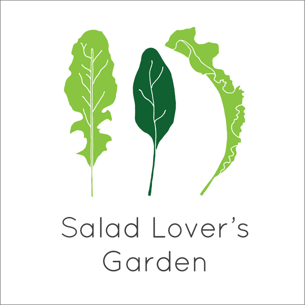 Salad Lover's Garden Seed Bundle - Large