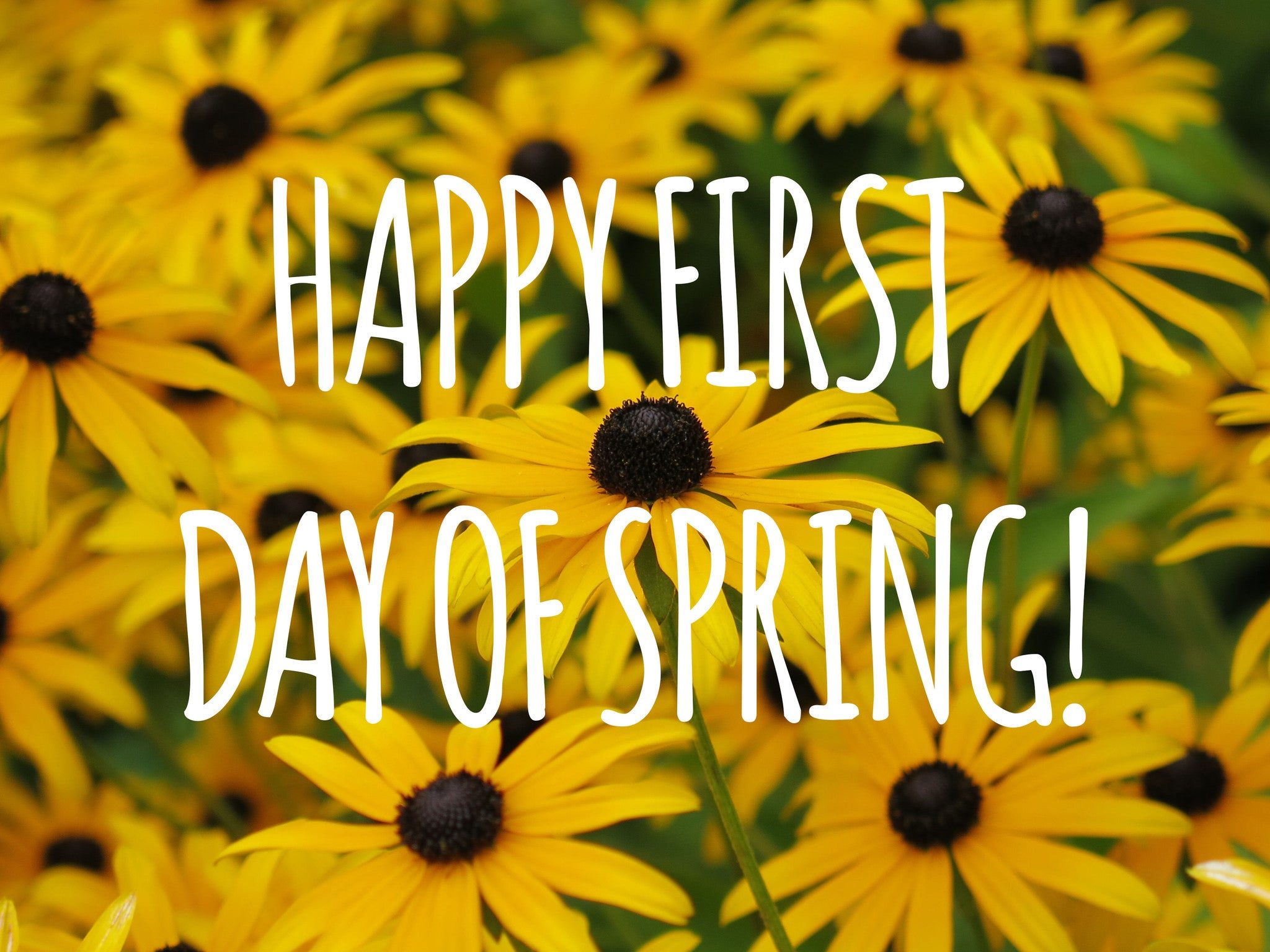 Delightful Article Detail. Home U003e News U003e Happy First Day Of Spring!