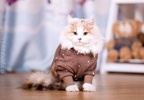 Cat Hooded Sweater