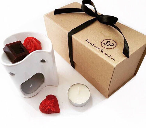 Christmas Boxed Gift Set - Wax Burner & Melts