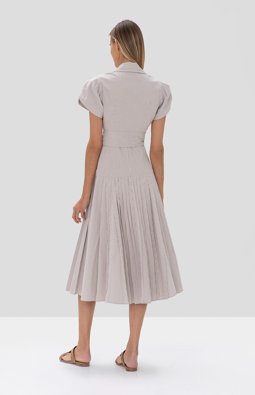 Amma Dress Textured Tan Stripes - Rear View