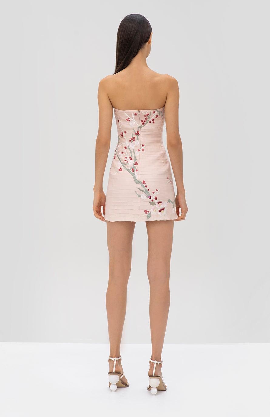 Alexis Asuka Dress in Light Pink - Rear View