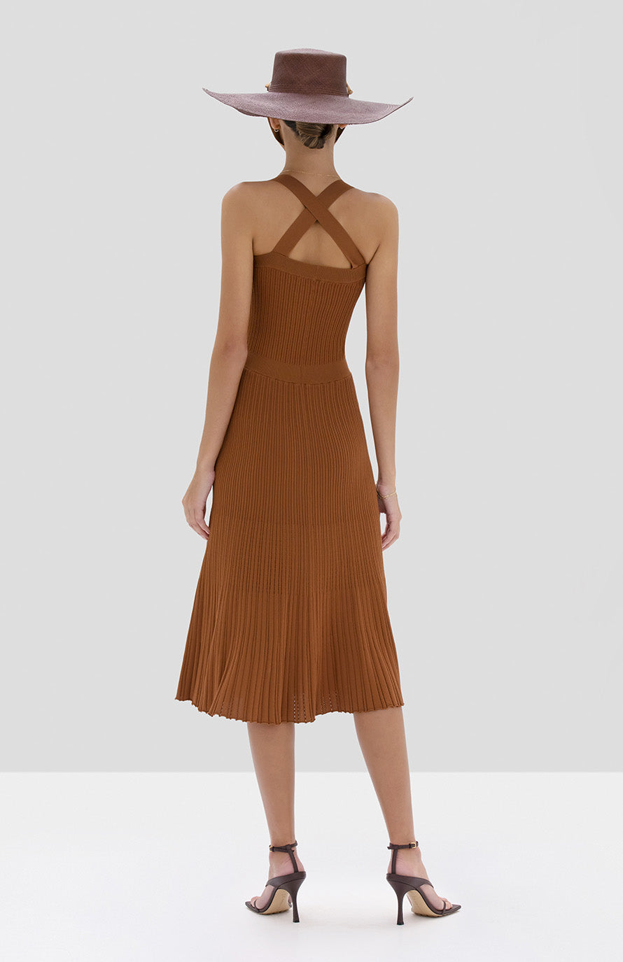 Alexis Bess Dress in Rust from the Spring Summer 2020 Collection - Rear View