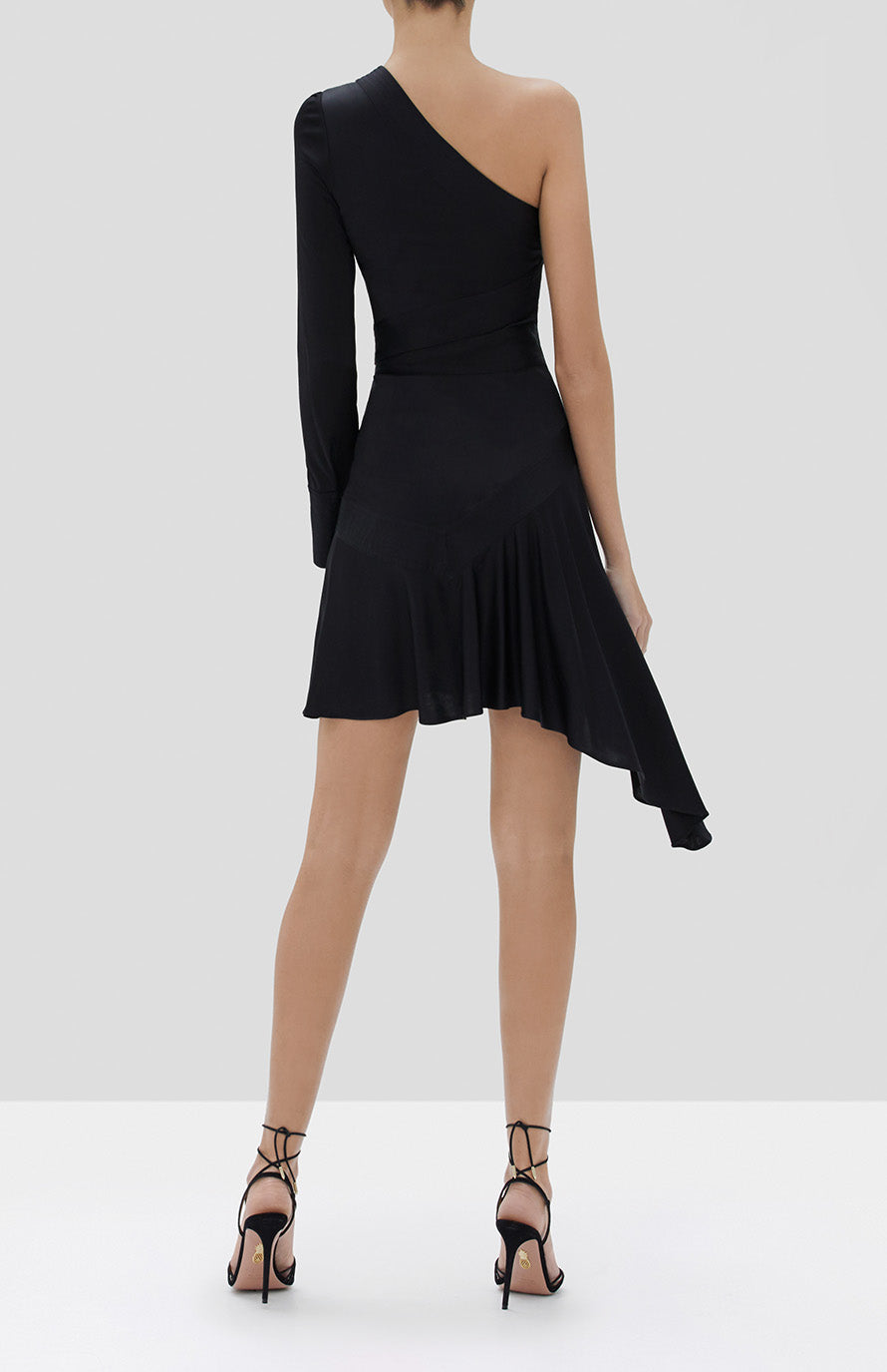 Alexis Gaja Dress in Black - Rear View