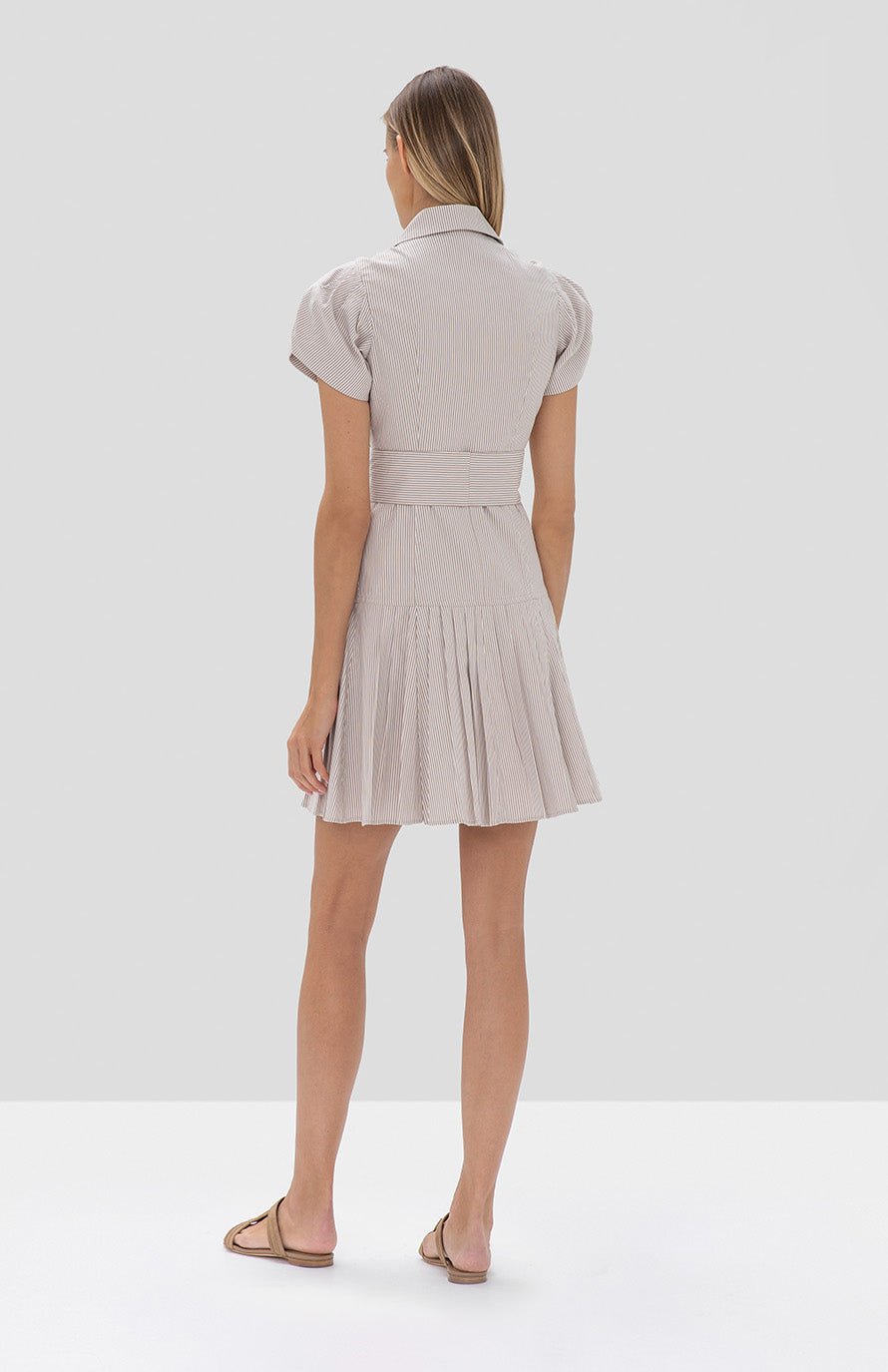 Haylee Dress Textured Tan Stripes - Rear View