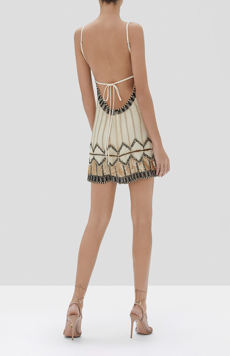 Alexis Jayna Dress in Tan Embroidery from the Fall Winter 2019 Ready To Wear Collection - Rear View