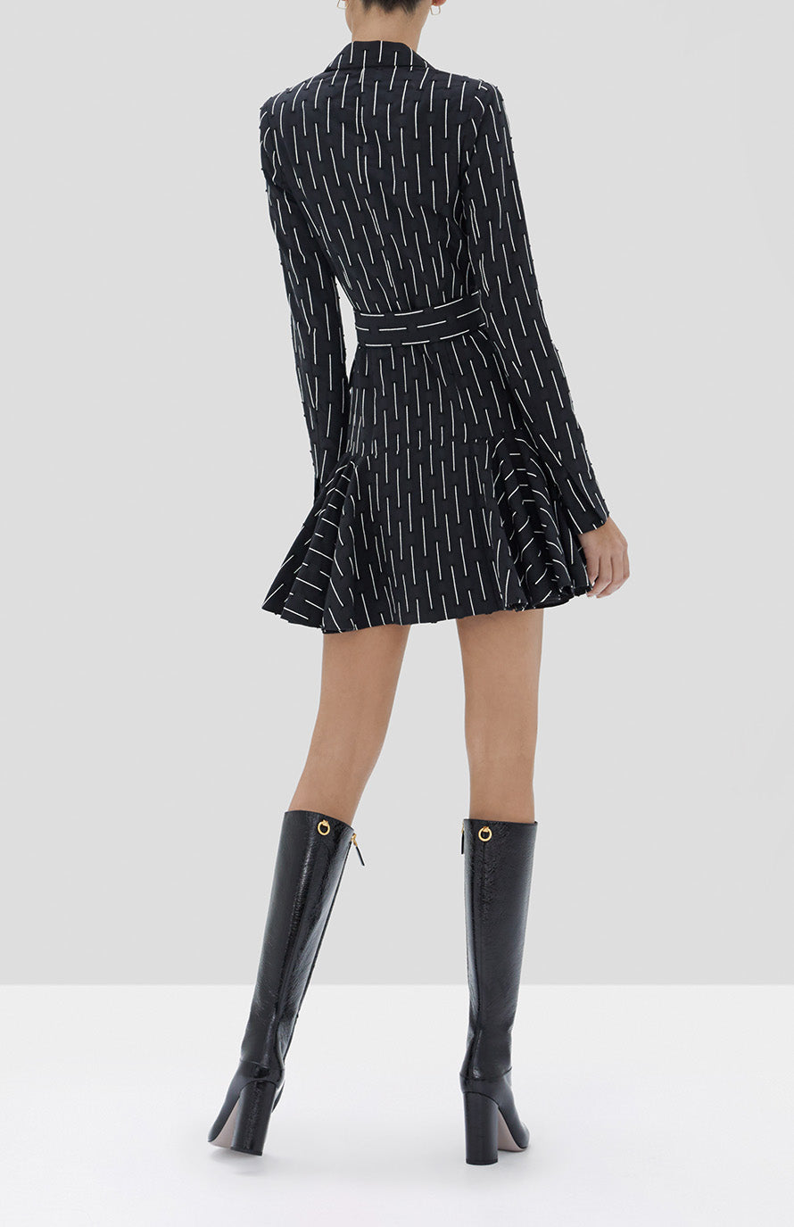 Alexis Kaeden Dress in Black Embroidered Stripes - Rear View