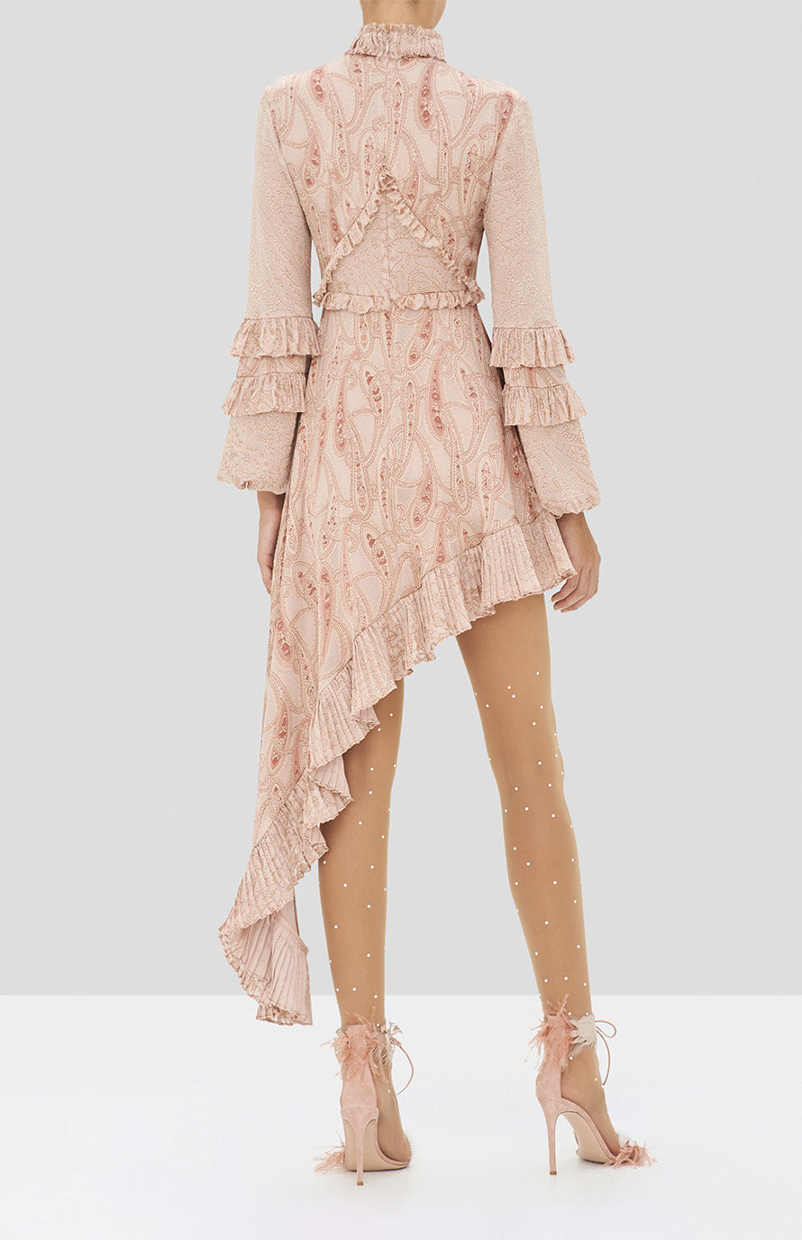 Alexis Liora Dress in Blush Paisley from the Holiday 2019 Ready To Wear Collection - Rear View