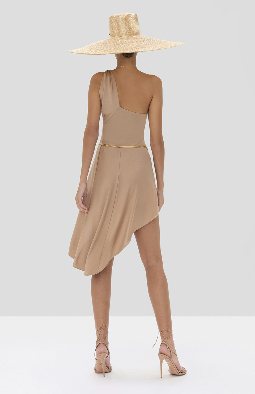 Alexis Mellie Dress in Tan from the Spring Summer 2020 Collection - Rear View