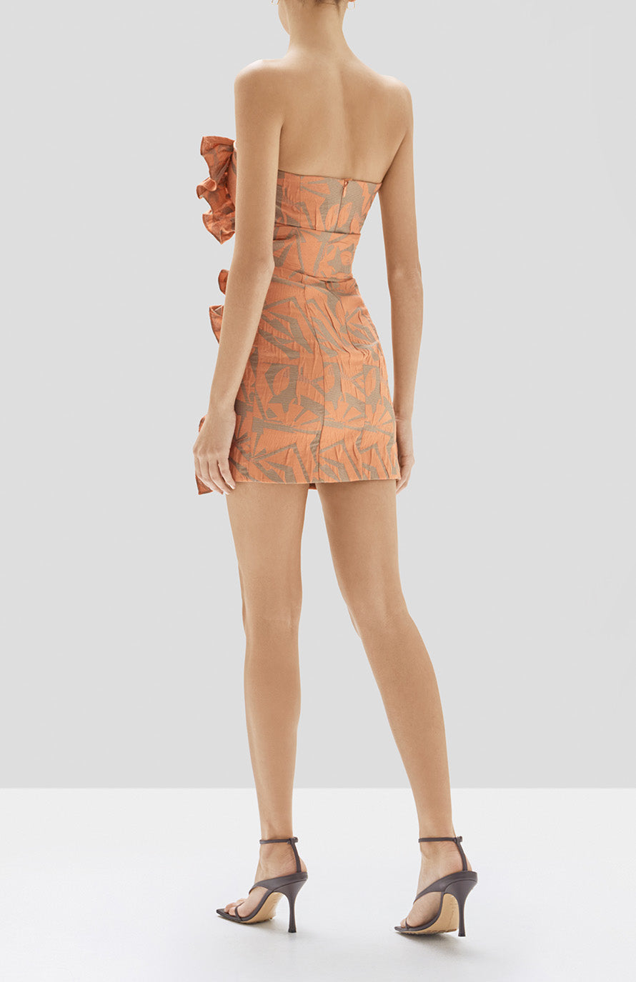 Alexis Nokoma Dress in Amber from Pre Spring 2020 Collection - Rear View