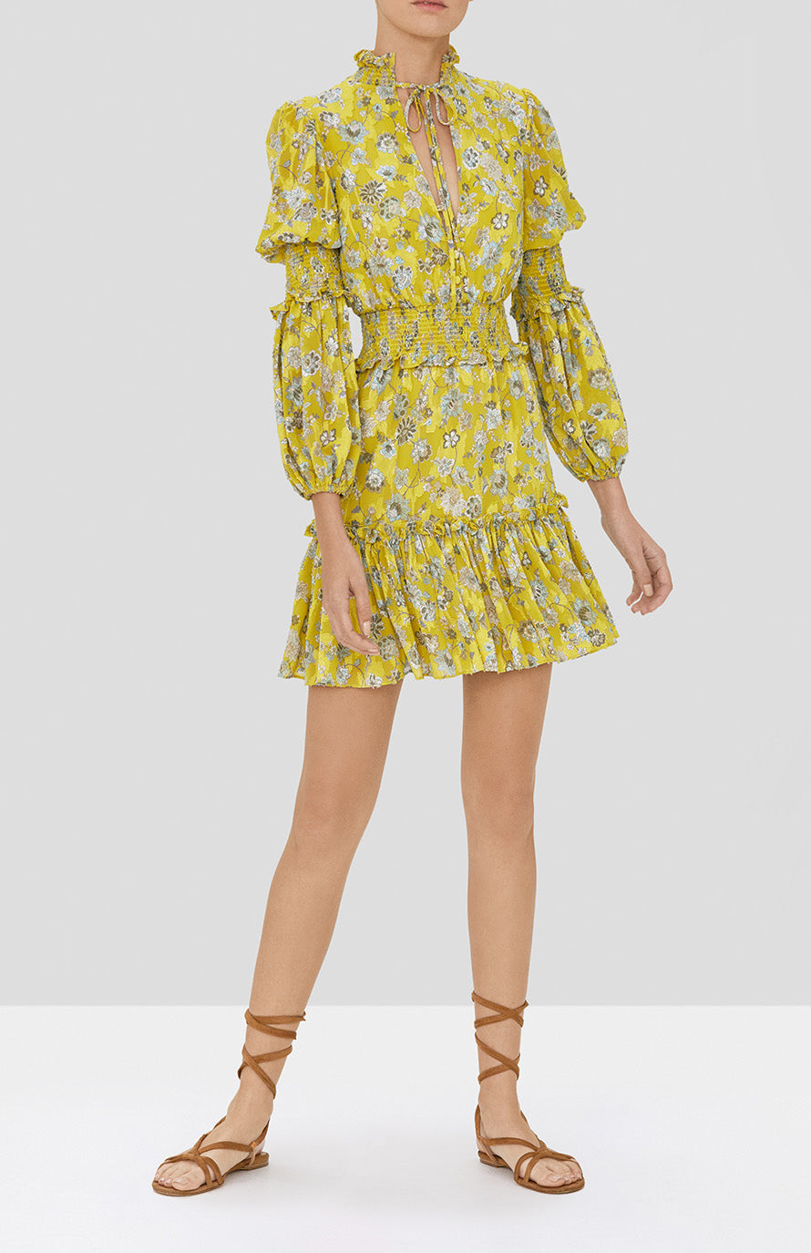 Alexis Rosewell Dress in Citron Floral from our Pre-Spring 2020 Ready To Wear Collection - Rear View