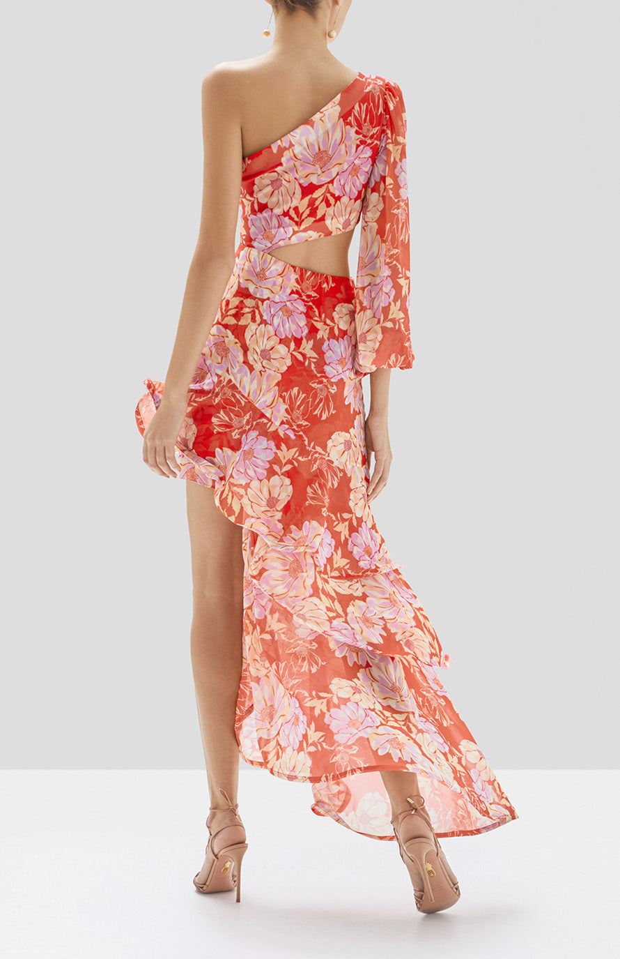 Alexis Sabetta Dress in Red Floral from Pre Spring 2020 Collection - Rear View