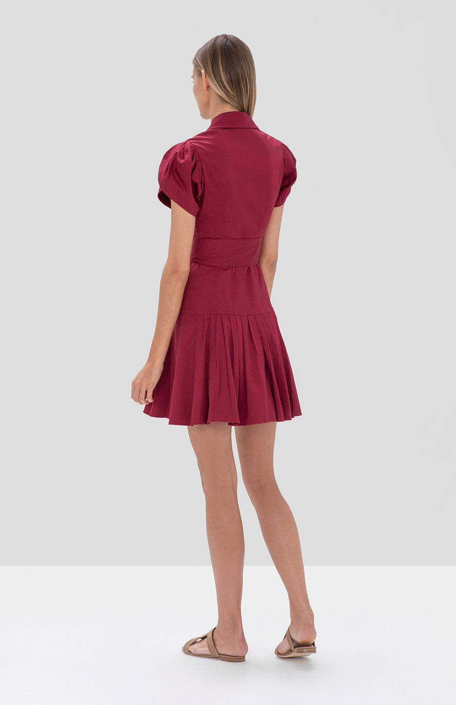 sisel dress rasberry - Rear View
