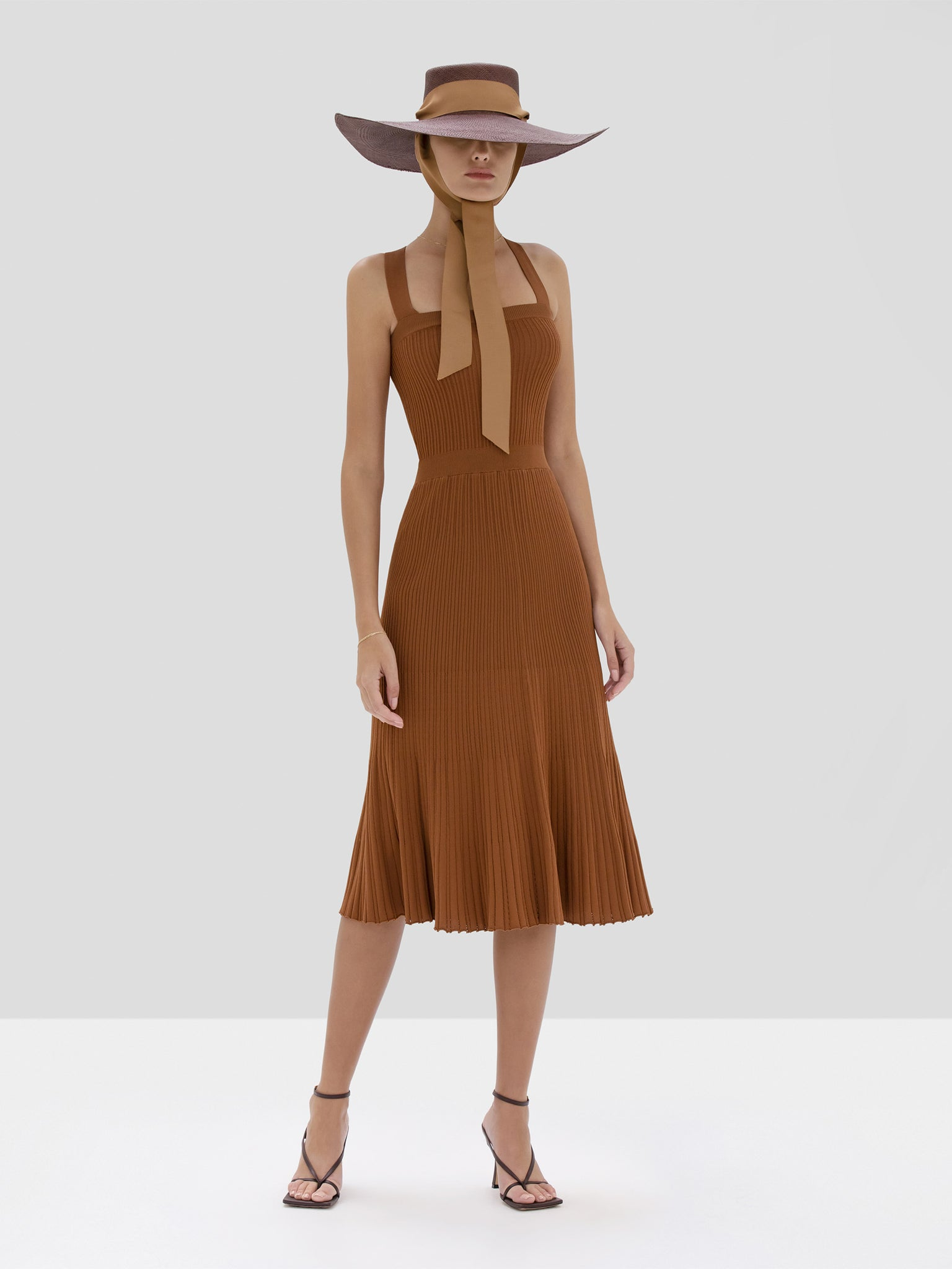 Alexis Bess Dress in Rust from the Spring Summer 2020 Collection