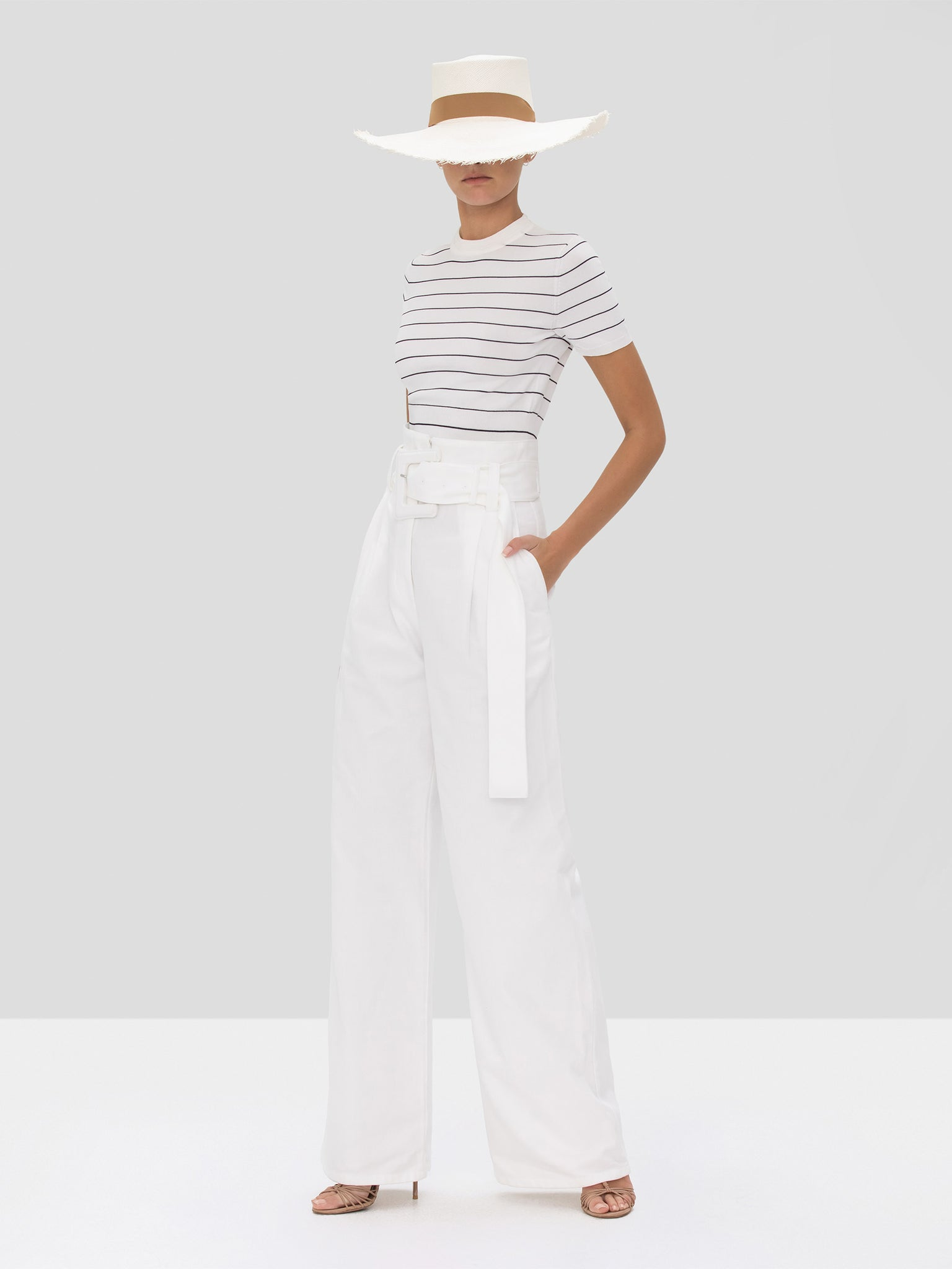 The Carlie Crop Top in White/Navy Stripes from the Spring Summer 2020