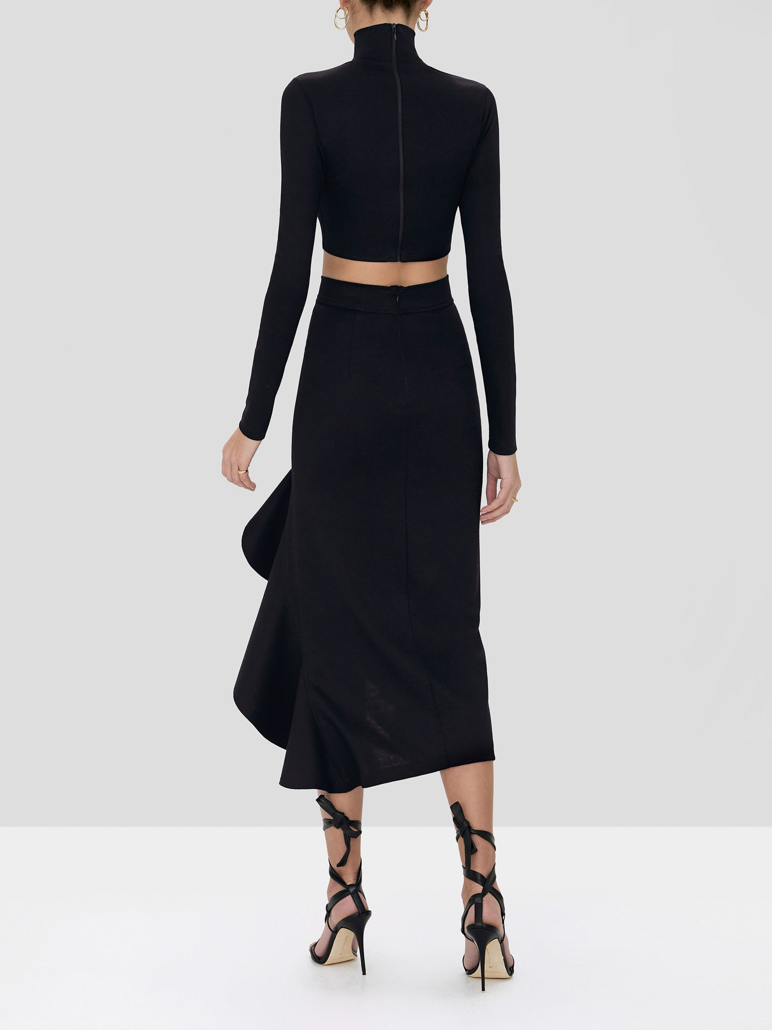 bani skirt in black - Rear View